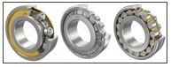 Rodamientos de rodillos cilíndricos / LFD Wälzlager GmbH