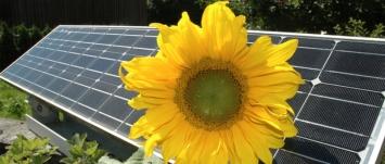 태양광 발전소