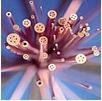 электроэрозионные электроды