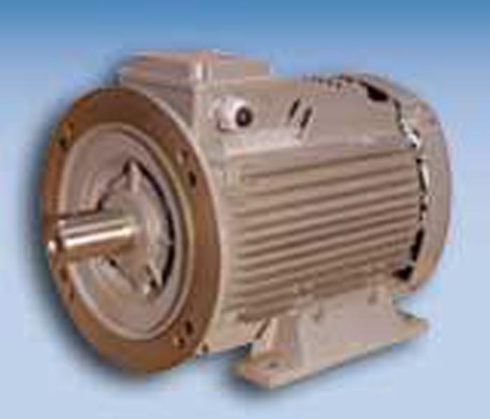 Asynchronmotoren