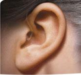 청력보조기