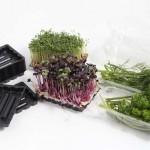 Lebensmittelverpackung / KNIPP GmbH