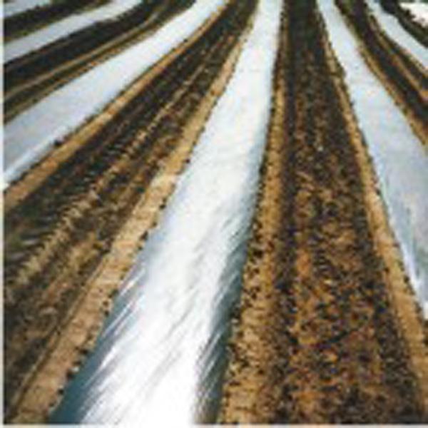 Zemědělské fólie