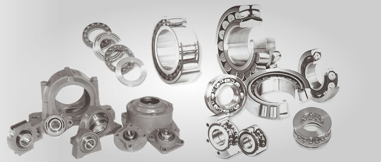 Special Antifriction Bearings